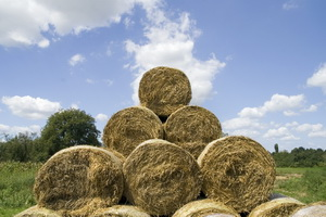 Biomass Power in the US Industry Market Research Report Now Available from IBISWorld