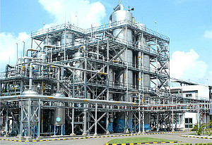 100 TPD Biofuel Demo Facility to Process Agricultural Wastes in India