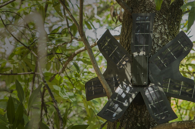 Solar-powered recycled smartphones could be the answer to fight illegal logging in rainforests