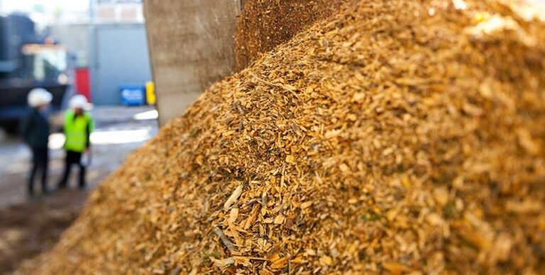 Biomass: Japan chooses Veolia to operate two new plants