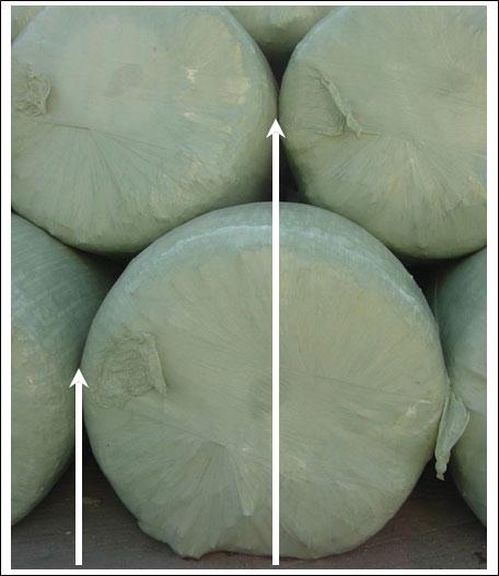 Round-bales-3