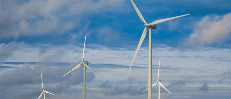 A strong business case to go carbon neutral: Roland Busch, Siemens