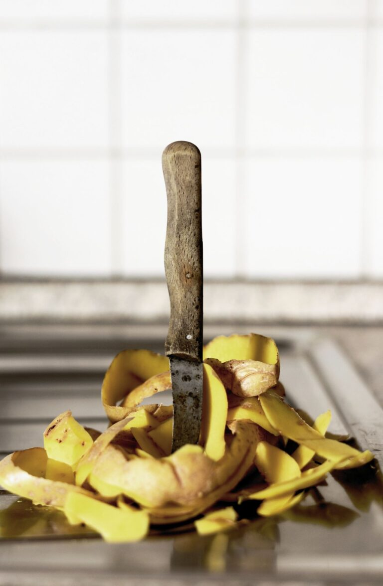 Zero Waste Scotland Highlights Value of Generating Energy from Food Waste