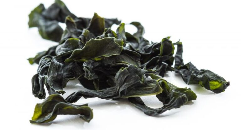 Seaweed: The answer to the plastic crisis?